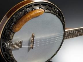 Kiti styginiai instrumentai