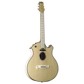 Akustinė gitara PARKER P-10EN