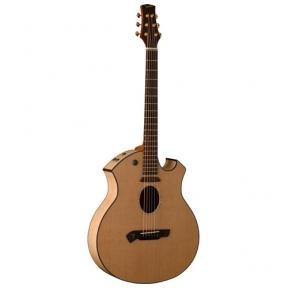 Akustinė gitara Parker P-8E