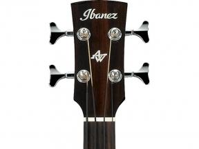 Akustinės bosinės gitaros