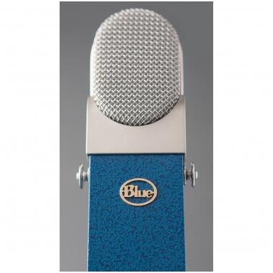 Blue Blueberry Signature Large Diaphragm Condenser microphone 2