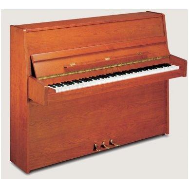 Bohemia Attractive-111 Piano