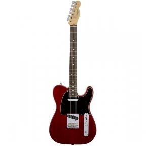 Elektrinė Gitara Fender Standard Telecaster RW 113200738