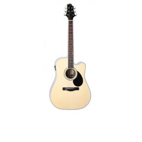Greg Bennett GD-100RSCE G-Series dreadnought guitar