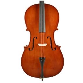 Leonardo LC-1012 Basic Series Cello Outfit 1/2