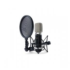 Marantz MPM-3500R - Ribbon Microphone with Ultra Low-Mass Diaphragm