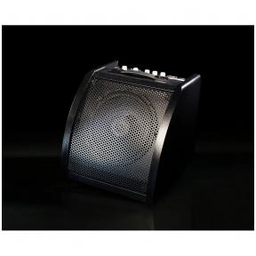 Medeli AP-30B drum monitor