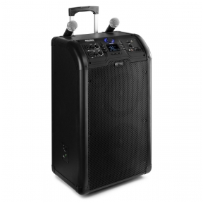 Portatyvi kolonėlė su bevieliais mikrofonais - Power Dynamics - PA300 170.125