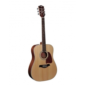 Richwood RD-17 Artist Series acoustic guitar
