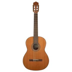 Salvador Cortez CC-22 Solid Top Artist Series Classic Guitar