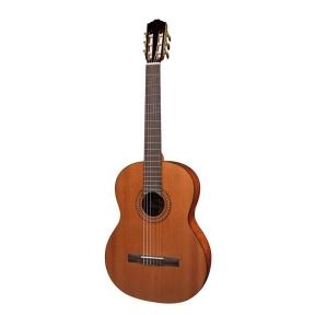 Salvador Cortez CC-25 Solid Top Artist Series Classic Guitar